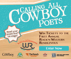 Rock 'n WR Poetry Contest